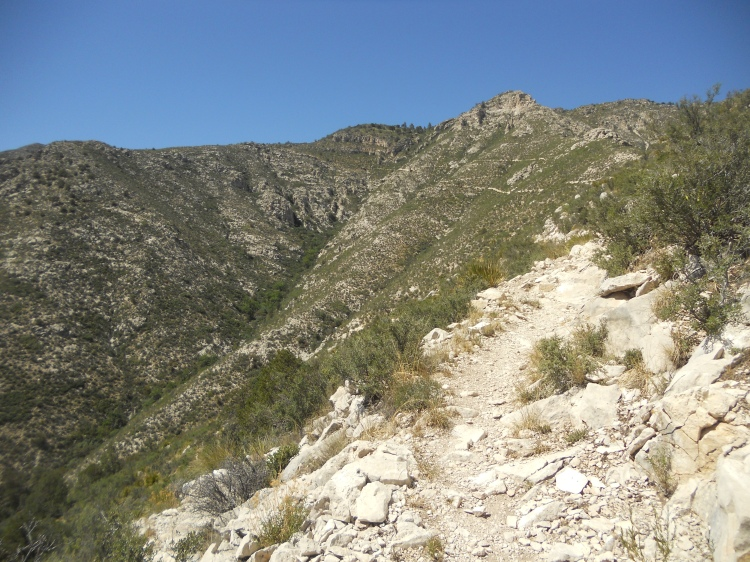 guadalupe mountains 009