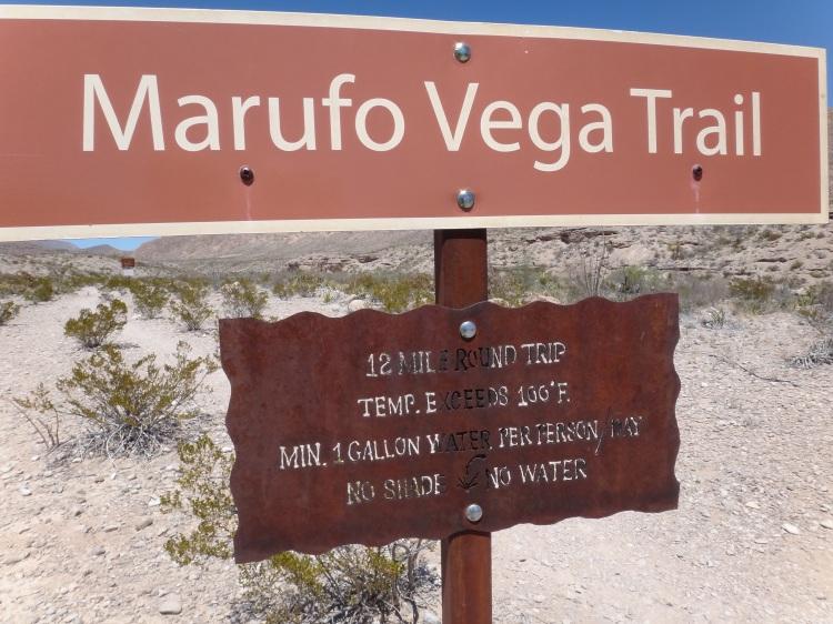 Marufo Vega 036