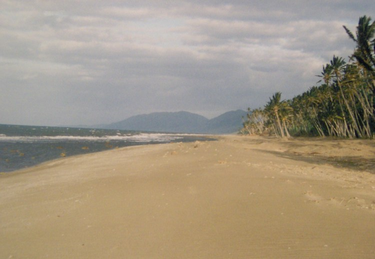 The beach at very low tide.